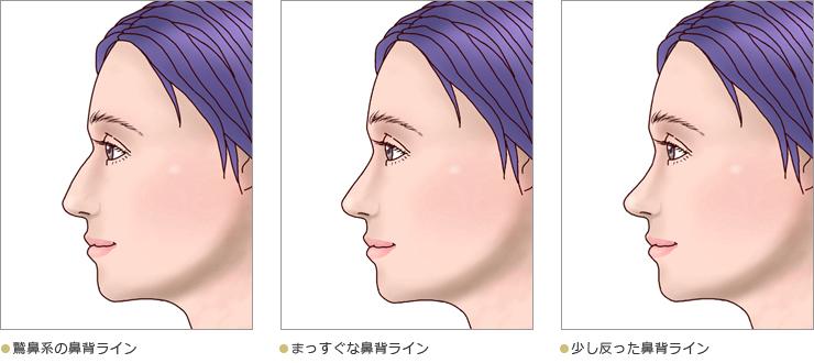 鼻のプロフィール02