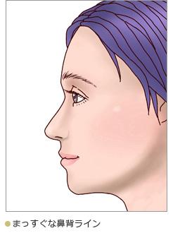 まっすぐな鼻背ライン