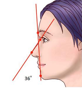 Nasofacial angle